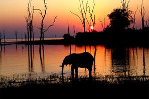 Sambesi Hausboot Safari