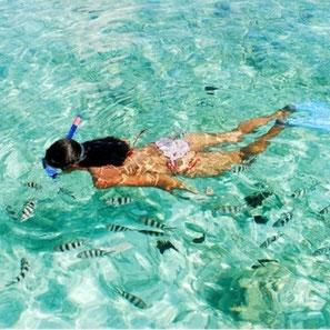 snorkeling, andaman sea, phuket, rawai, maipreu, activites nautiques