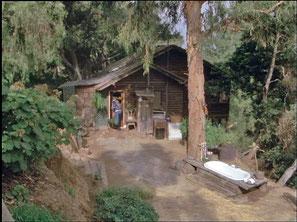 Colt's Haus Hütte Colt Seavers