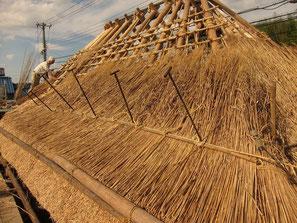 外側の竹の押さえを結びます。