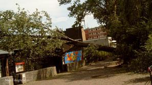 Gewittertief GERRIT, 2005