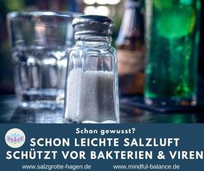 Ein FairSchenk-Laden in Hagen - Meine nachhaltige Gründungsidee