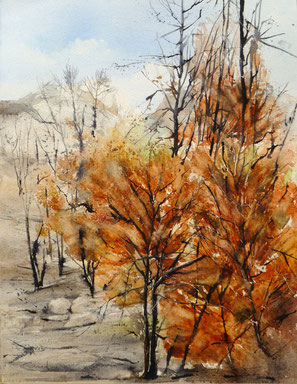 aquarelle incendies la clape