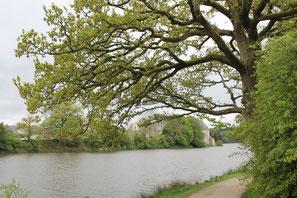 Vue de l'abbaye depuis le début de la balade le long de l'étang.