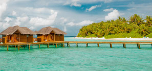 Malediven last minute Urlaub beliebte Insel Fihalhohi zum Tauchen Schnorcheln