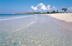 Go Well Erlebnisreise nach Mallorca