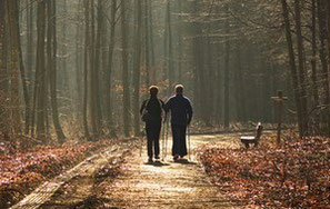 Nordic Walking mit Go Well