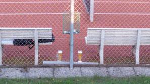 Was steht zwischen zwei Bänken, ist blond und kühl und unterhält sich über Tennis?