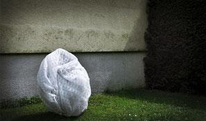 Patricia Lincke, Fotografie, Performance, Kunst
