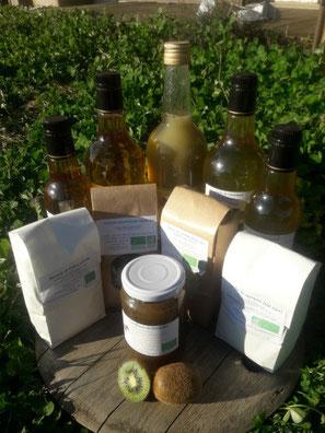 photo de l'ensemble des produits de la souris verte