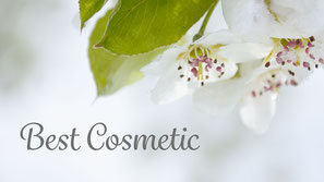 Apfelblueten, webdesign, bestcosmetic, flowfly.photo