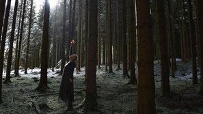 Lichtwesen, Waldbaden, Beatrice Sackmann, flowflyphoto