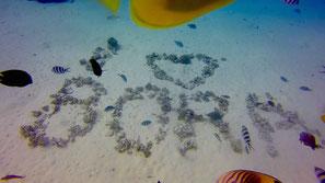 Aquarium in Bora Bora