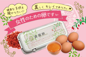 養麗卵,遺伝子組み換えでない,乾マリコ,イヌイ薬局,鳥取県産