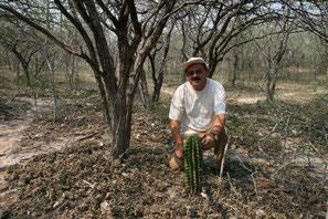 Echinopsis rhodotricha,  Mato Grosso do Sul 2007