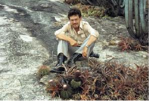 Melocactus azulensis, Itaobim