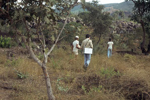 Gang zum ersten Discocactus, Minas Gerais 1979 / Caminho até o primeiro Discocactus, Minas Gerais 1979