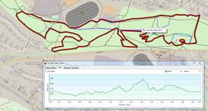 Streckenpläne Wagwiesenrennen