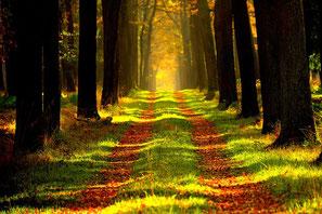 秋、春のアウトドア