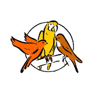 Rudi Vennhaus Schauwellensittiche VP Produkte Logo