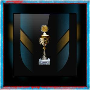 Erol Alp wird bei Blue Sharks Taekwondo als Sportler des Jahres 2016 ausgezeichnet