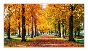"""Bildheizung """"Herbst"""" 600 Watt, 110x60cm, hier mit Rahmen anthrazit glänzend, zum Vergrößern anklicken!"""