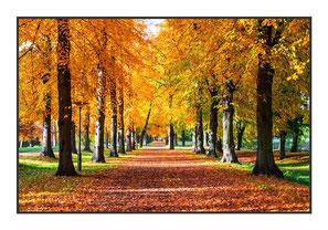 """Bildheizung """"Herbst"""" 450 Watt, 90x60cm, hier mit Rahmen anthrazit glänzend, zum vergrößern anklicken!"""