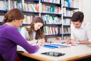 Studium/Fachausbildungen