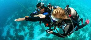 Plongeur faisant l'exercice de navigation de la spécialité PADI Navigation