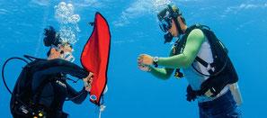 Deux plongeurs faisant l'exercice avec le parachute de relevage pour la spécialité recherche et récupération d'objets PADI