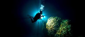 Plongeur de nuit à nusa penida