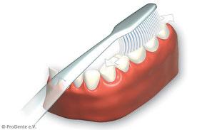 1. Kauflächen der Zähne inks und rechts, oben und unten putzen.