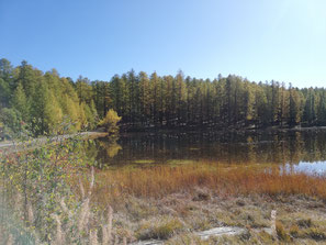 peche a la truite rivière torrent peche sportive mouche toc sport no kill maille eau pure