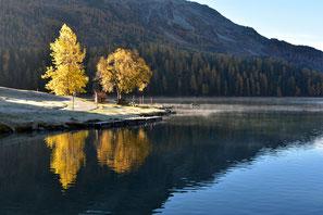 Graubünden Engadin Schweiz