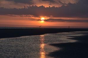 Sonnenuntergänge Abendstimmung Wattenmeer