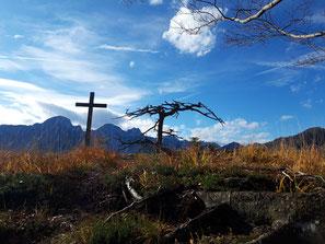 Brandberg - Almseeblick, Gipfelkreuz und Baum am Gipfel