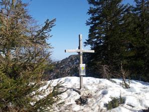 Schneiderberg Gipfelkreuz im Almtal
