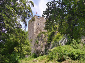 Ruine Haichenbach Schlögener Schlinge
