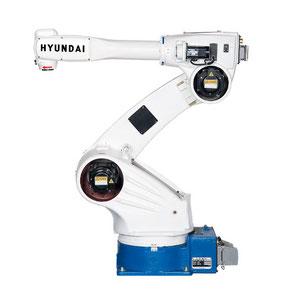 Housse de protection Robot Hyundai HH 020 HDPR