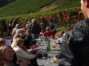 Das Weingut Mönchberger Hof liegt direkt unterhalb vom Rotweinwanderweg.