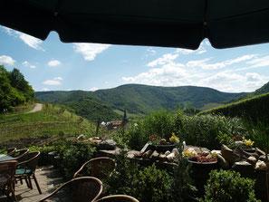 Das Weinhaus Michaelishof liegt direkt am Rotweinwanderweg und schmiegt sich in die Mayschoßer Weinlandschaft ein.
