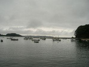 韮の浜漁港2
