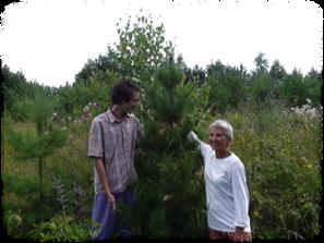 我、塔提安娜和雪松樹