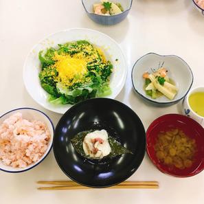 桜色ご飯/春の山椒味噌和え/鯛の桜蒸し/ミモザサラダ/ごぼうスープ