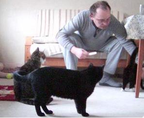 Uwe Hollerbach - ohne Unterbrechung ist er für unsere Pflegekatzen da