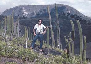 Coleocephalocereus pluricostatus, Minas Gerais 1983
