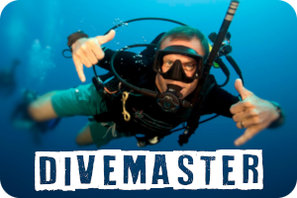 divemaster_internship_nusa_penida