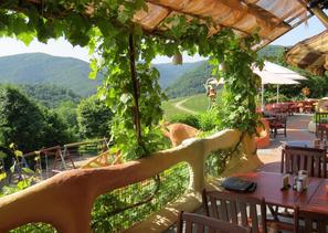 Bei den Förster´s Weinterrassen direkt am Rotweinwanderweg können Sie jeden Sonntag umfangreich Frühstücken.