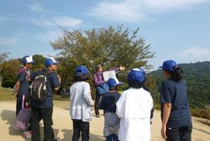 奈良県では、橿原神宮の森と春日山原生林を訪問し、人工林と自然林の違いを学習
