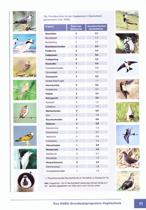 Prioritäre Arten für den Vogelschutz